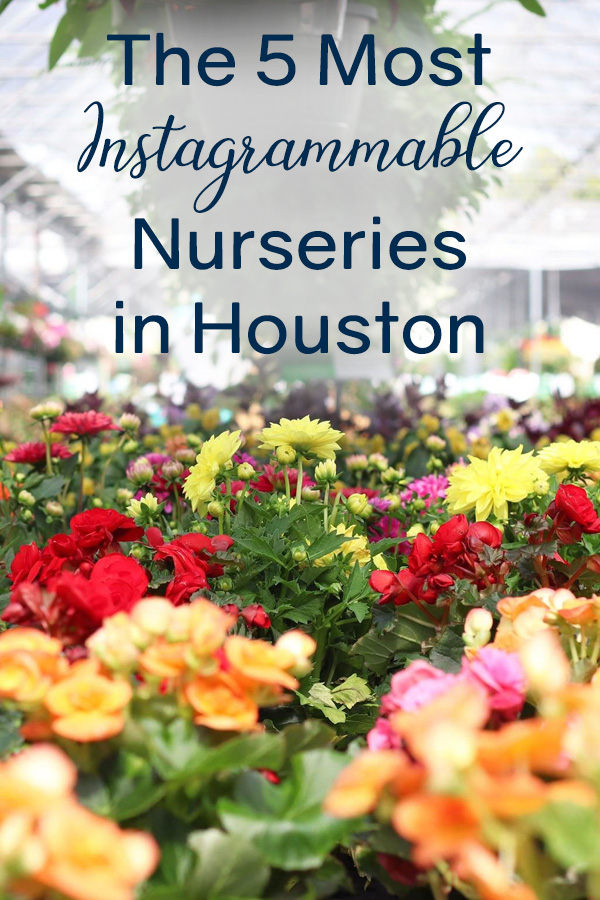 Instagrammable Nurseries in Houston