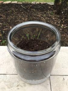 terrarium soil layer