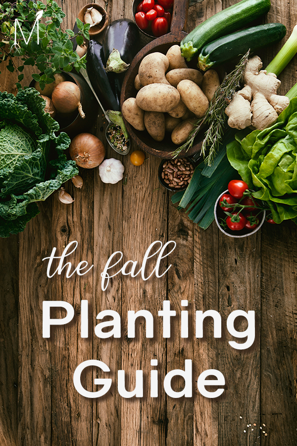 Fall Planting Guide