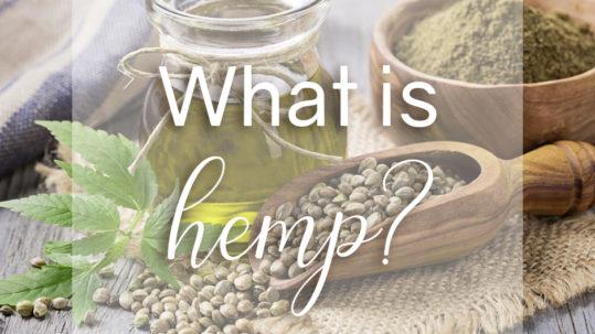 Hemp Blog