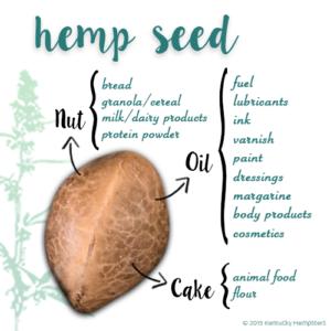 Hemp Seed Uses