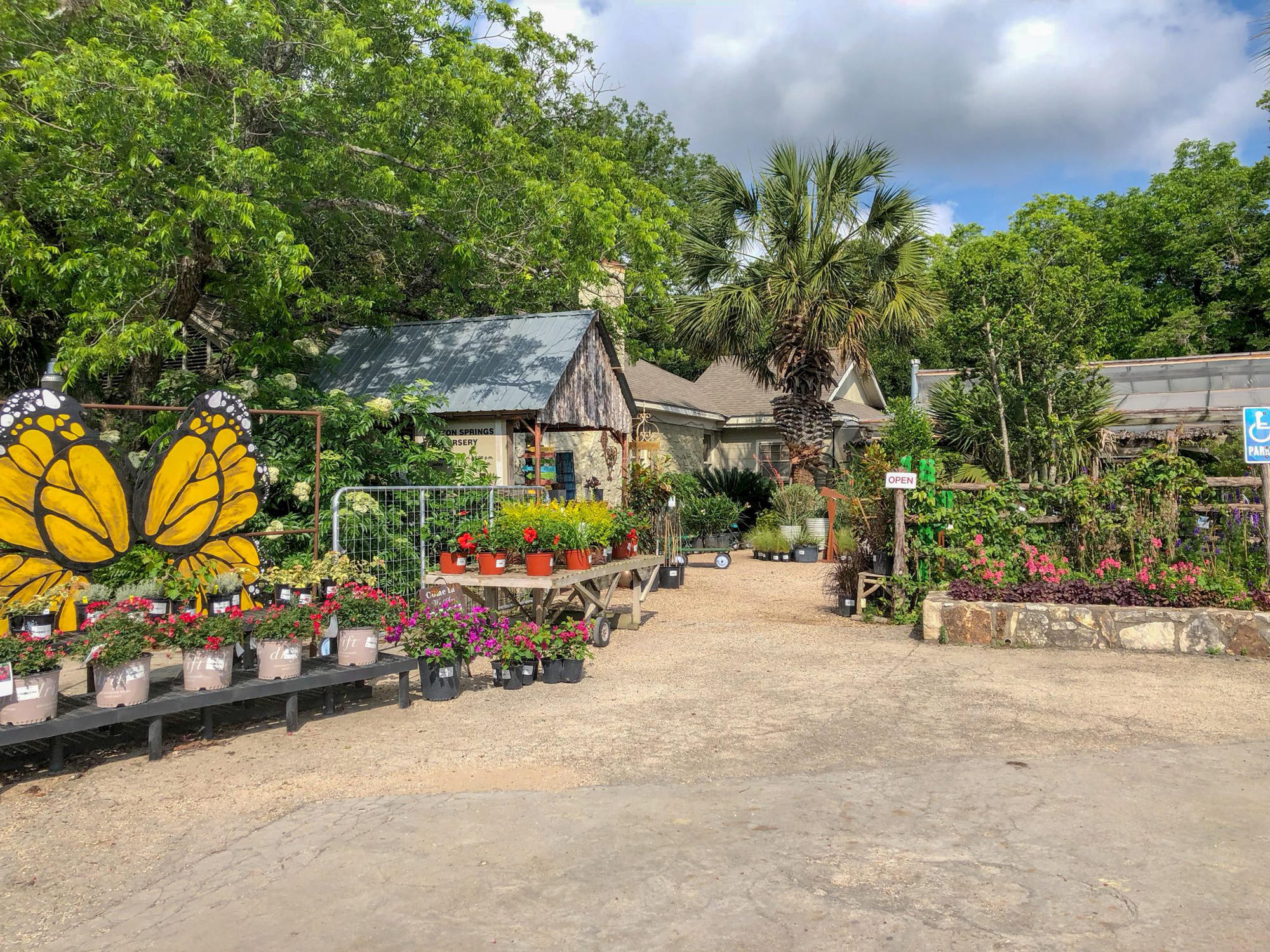 The Best Austin Nurseries and Garden Centers