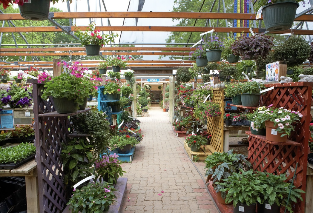 Rainbow Gardens - 5 Amazing San Antonio Nurseries